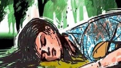 Photo of आगरा में महिला और 3 बच्चों की हत्या