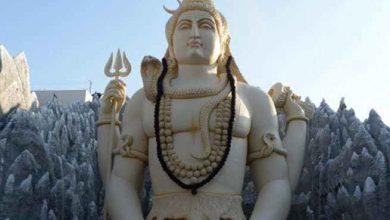 Photo of भगवान शिव को प्रिय धतूरा फायदे से होता है भरपूर, लेकिन इस्तेमाल से पहले ये बातें जरूर जानें