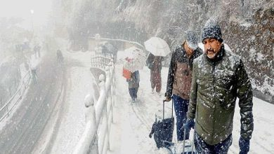 Photo of हिमाचल में भारी बारिश: किन्नौर की चोटियों पर बर्फबारी, टूरिस्ट की मौत