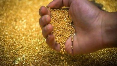 Photo of Gold Price: सोने की कीमतें 5 साल में तोड़ देंगी सभी रिकॉर्ड, इस स्तर को कर सकती हैं पार