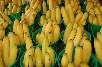 Photo of सर्दियों में दिल की सेहत का रखें खास ख्याल:हार्ट अटैक से बचना है तो रोजाना जरूर खाएं 1 केला,