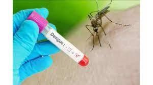 Photo of मेरठ:-डेंगू का डंक लीवर पर कर रहा है अटैक,हो जाए सावधान!