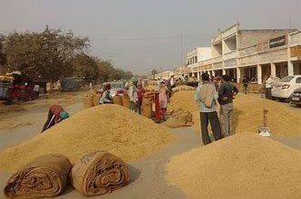 Photo of 24 हजार क्विंटल धान का फर्जीवाड़ा:घीड़ मंडी सुपरवाइजर समेत 31 पर मामला दर्ज,